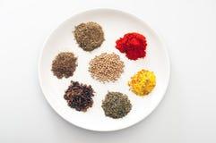 керамическая плита трав spices белизна Стоковая Фотография