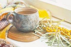 Керамическая чашка с чаем, ветвь мор-крушины и связанное одеяло Стоковая Фотография