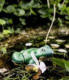 Керамическая лягушка Стоковая Фотография