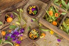 Керамические чашки здорового травяного чая Стоковое Изображение RF