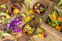 Керамические чашки здорового травяного чая Стоковая Фотография