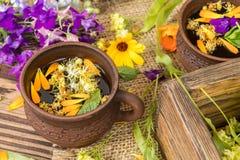 Керамические чашки здорового травяного чая Стоковая Фотография RF