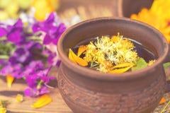 Керамические чашки здорового травяного чая Стоковое Фото