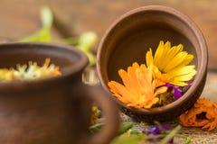 Керамические чашки здорового травяного чая Стоковое фото RF