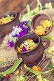 Керамические чашки здорового травяного чая Стоковое Изображение