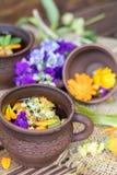 Керамические чашки здорового травяного чая Стоковые Фотографии RF