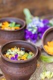 Керамические чашки здоровых травяных teaCeramic чашек здоровое травяного Стоковые Изображения