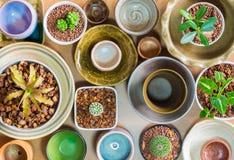 Керамические шары подготовленные для использования для бака комнатного растения Стоковая Фотография