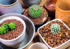Керамические шары подготовленные для использования для бака комнатного растения Стоковые Изображения RF