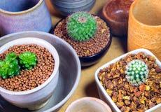 Керамические шары подготовленные для использования для бака комнатного растения Стоковые Фото