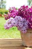 Керамический бак с ветвью цветка сирени на деревянной предпосылке Стоковые Фото