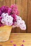 Керамический бак с ветвью цветка сирени на деревянной предпосылке Стоковые Изображения RF