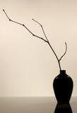 керамический кувшин Стоковая Фотография