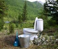 Керамический новый туалет в древесинах Стоковые Изображения RF