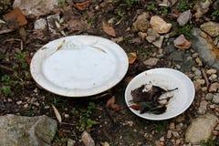2 керамических покрашенных плиты брошенной как отброс в природе Стоковое Фото