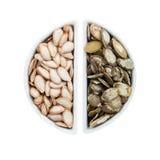 2 керамических плиты с семенами тыквы Стоковые Изображения