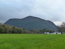 Керри Ирландия Killarney национальное Park County стоковое изображение