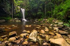 Кертис падает в национальный парк Tamborine держателя на Gold Coast Стоковые Изображения RF