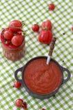 Кетчуп томатного соуса домодельный Стоковое Изображение RF