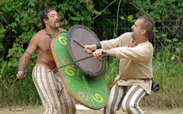 Кельтские ратники Стоковые Изображения RF