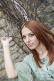 Кельтский красный цвет Стоковые Фотографии RF