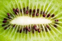 киви плодоовощ Стоковые Изображения RF