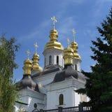 Киев, Украин Куполки Pechersk Lavra стоковое фото rf