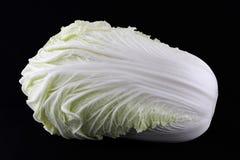 киец капусты Стоковое фото RF