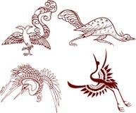 киец птицы Стоковое Фото