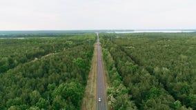 Кинематографический вид с воздуха управлять автомобилей на проселочной дороге в лесе на летний день видеоматериал