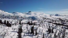 Кинематографическое движение камеры в сценарном ландшафте горы в зиме акции видеоматериалы