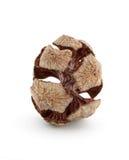 кипарис конуса Стоковое Фото