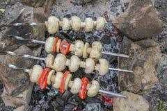 кипеть варящ воду отрезанную грибами Стоковые Изображения