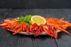 Кипеть красные ракы на белом блюде Стоковые Фото