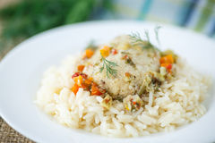 Кипеть рис с шариками рыб Стоковые Фотографии RF