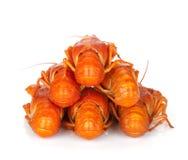 Кипеть crayfishes Стоковые Фотографии RF