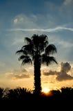 Кипрскый заход солнца Стоковые Изображения RF