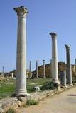 Кипр, старые салями стоковые изображения