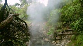 Кипя бассейн в национальном парке Rincon de Ла Vieja сток-видео