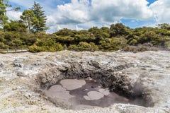 Кипя бассейн масла в Wai-O-Tapu Стоковые Фото