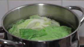 Кипя зеленая капуста в воде видеоматериал