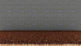 Кирпичей стены пол задней и сухой травы внутри Стоковая Фотография RF