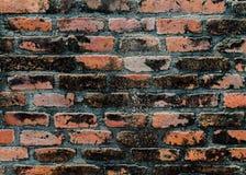 кирпичи кирпича много старая стена текстуры стоковые изображения