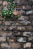 Кирпичи старого grunge естественные преграждают текстурированное каменное острословие предпосылки Стоковое фото RF