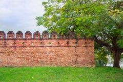 Кирпичи стены Стоковое Изображение