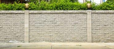 Кирпичная стена и зеленые лист стоковые изображения rf