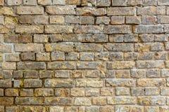 Кирпичная стена Кирпичная стена Стоковые Фотографии RF