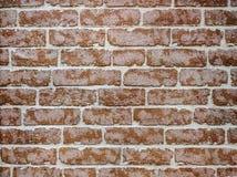 Кирпичная стена контраста стоковая фотография rf