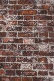 кирпичная стена предпосылки Стоковое Изображение RF