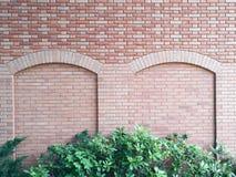 Кирпичная стена с зелеными растениями Стоковое Изображение RF